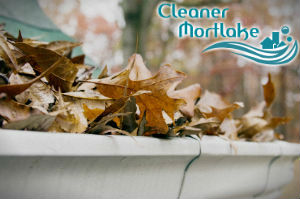gutter-cleaners-mortlake